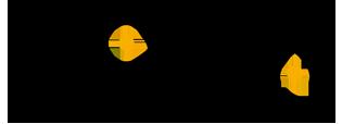 PONIVA Firewall | Yerli ve Yeni Nesil Güvenlik Duvarı | Siber Güvenlik Logo